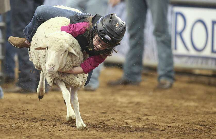 Alison Hibbetts hangs on during the Mutton Bustin' in the Houston Livestock Show and Rodeo at Relian