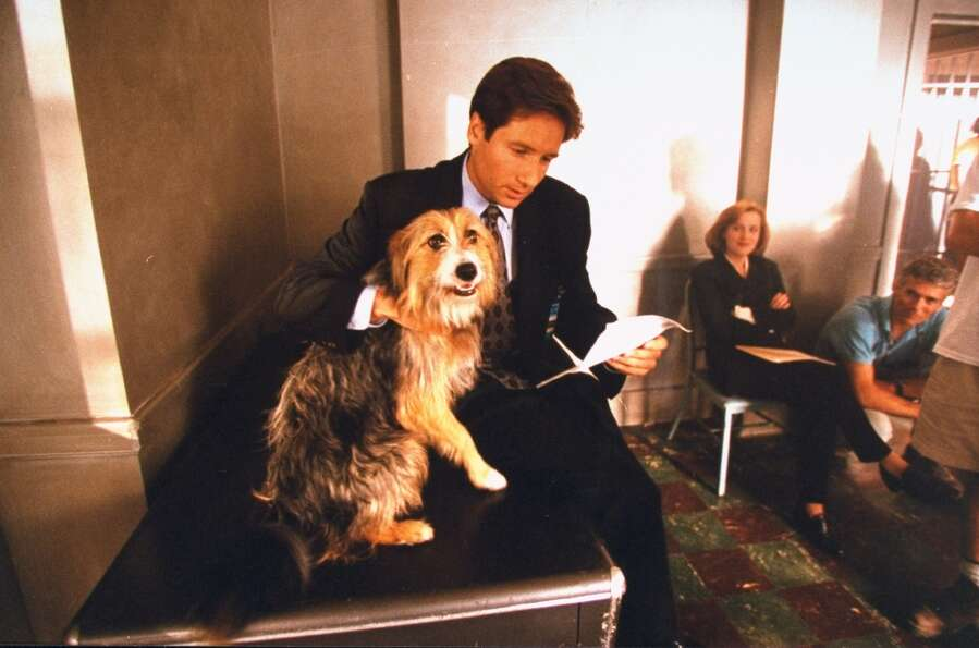 Now for some behind-the-scenes shots of ''The X-Files'' in 1995, with David Duchovny petting his dog