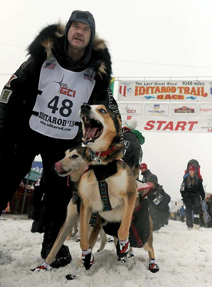 Alan Moore stands with his lead dogs at the start line for the ceremonial start of the Iditarod Trail Sled Dog Race on Saturday, March 2, 2013, in Anchorage, Alaska. The competitive portion of the 1,000-mile race is scheduled to begin Sunday in Willow, Alaska.  Photo: Bob Hallinen, Associated Press