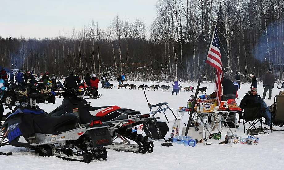 Coworkers of musher Kelley Maixner, from Aesthetic Family Dentistry, have a party on the lake as musher Jessica Hendricks passes by during the start of the Iditarod Trail Sled Dog Race, Sunday, March 3, 2013, in Willow, Alaska. 65 teams will be making their way through punishing wilderness toward the finish line in Nome on Alaska's western coast 1,000 miles away.  Photo: Bob Hallinen, Associated Press