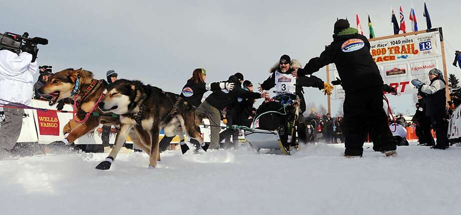 Scott Janssen is high-fived by his handlers as he leaves the starting line of the Iditarod Trail Sled Dog Race, Sunday, March 3, 2013, in Willow, Alaska. 65 teams will be making their way through punishing wilderness toward the finish line in Nome on Alaska's western coast 1,000 miles away. (AP Photo/The Anchorage Daily News, Bob Hallinen)  LOCAL TV OUT (KTUU-TV, KTVA-TV) LOCAL PRINT OUT (THE ANCHORAGE PRESS, THE ALASKA DISPATCH) Photo: Bob Hallinen, Associated Press