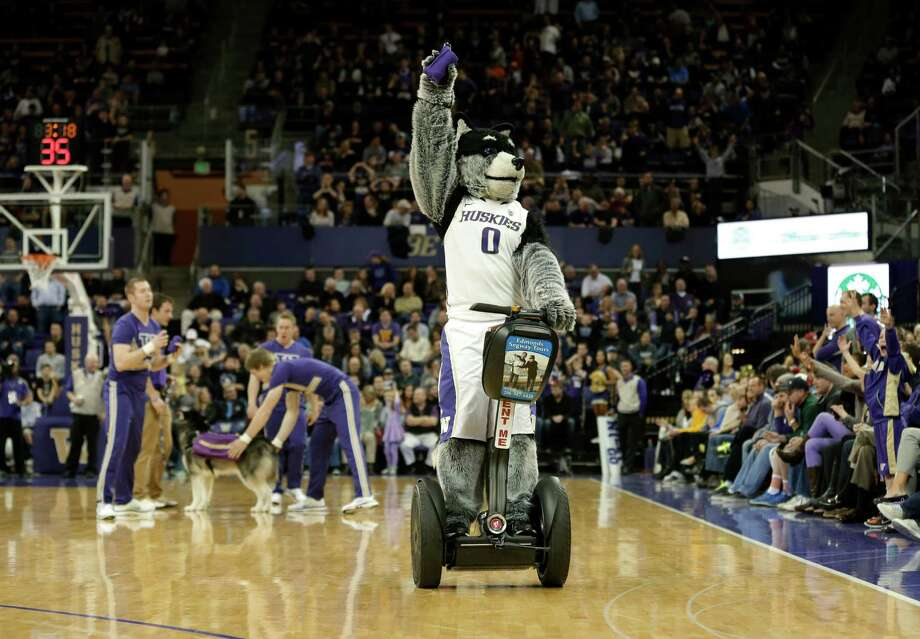 """Harry,"" the Washington mascot, rides a Segway scooter during an NCAA college basketball game between Washington and Washington State, Sunday, March 3, 2013, in Seattle. Photo: Ted S. Warren / Associated Press"