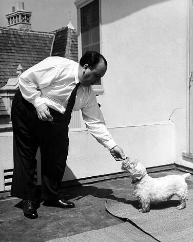 Alfred Hitchcock standing outside at home, feeding his Sealyham terrier, Mr. Jenkins. Photo: Peter Stackpole, Time Life Pictures/Getty Images