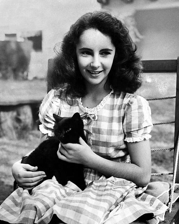 13-year-old Elizabeth Taylor holds one of her many pets, a black cat named Jill.  Photo: Peter Stackpole, Time Life Pictures/Getty Images