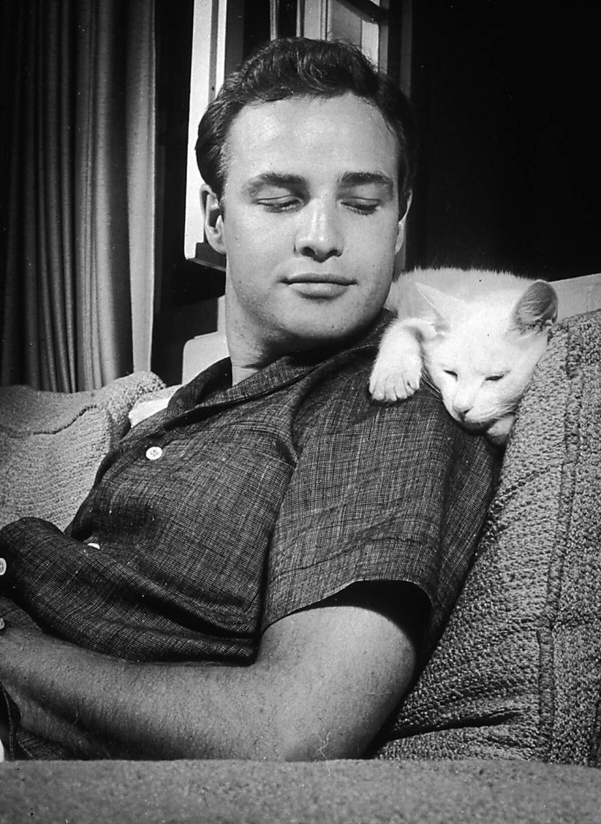 Marlon Brando leans back on a sofa and smiles at his cat, who lays across his shoulders, at his home in Los Angeles in 1954.