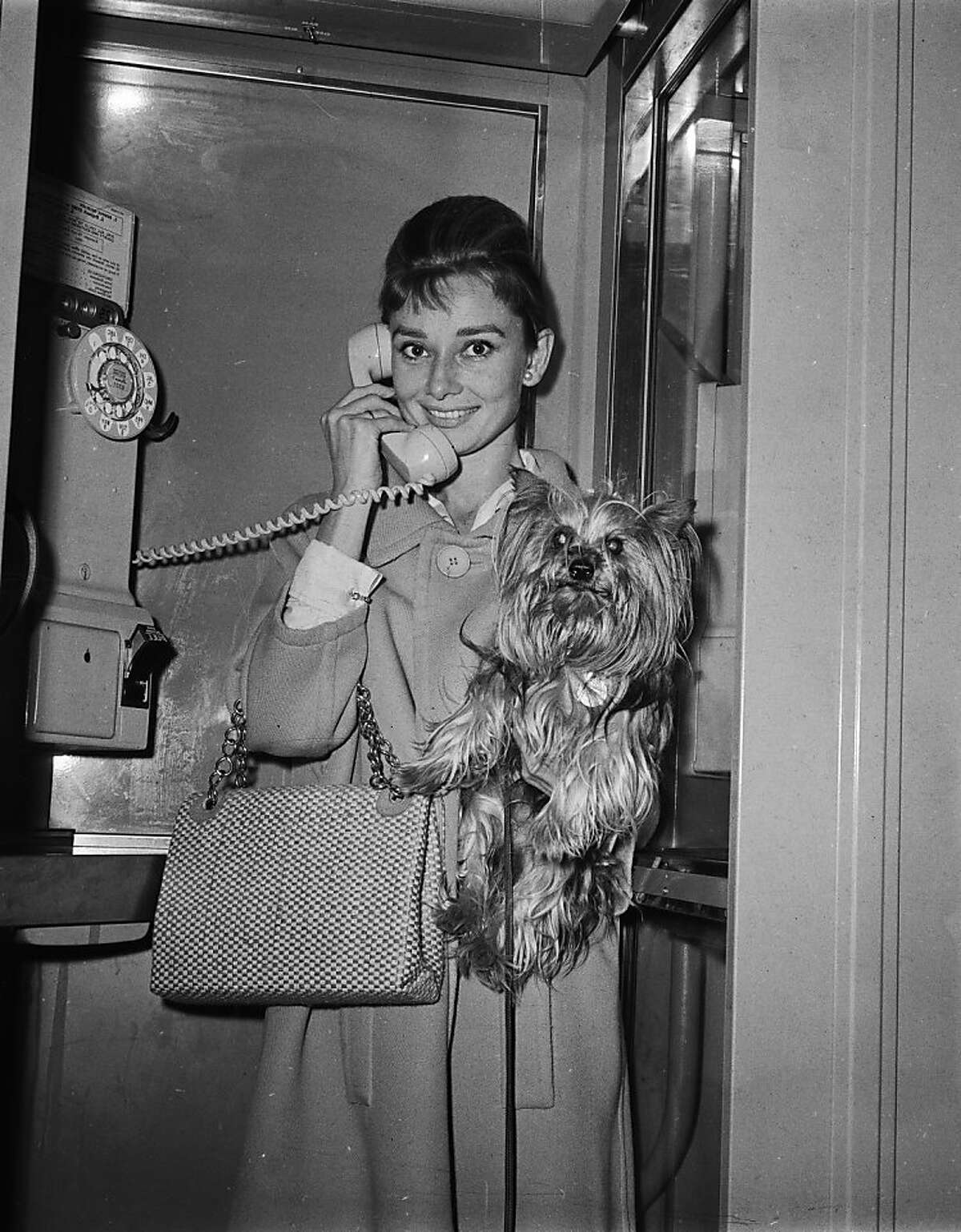 Audrey Hepburn makes a phone call holding her beloved pet Yorkshire terrier, Mr. Famous, in 1961.