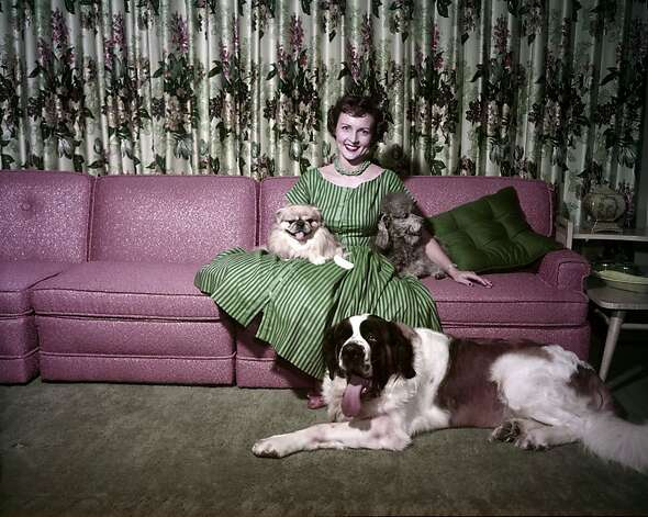 Betty White with dogs Bandy, Stormy and Danny at home circa 1954. Photo: NBC/NBCU Photo Bank, Getty Images