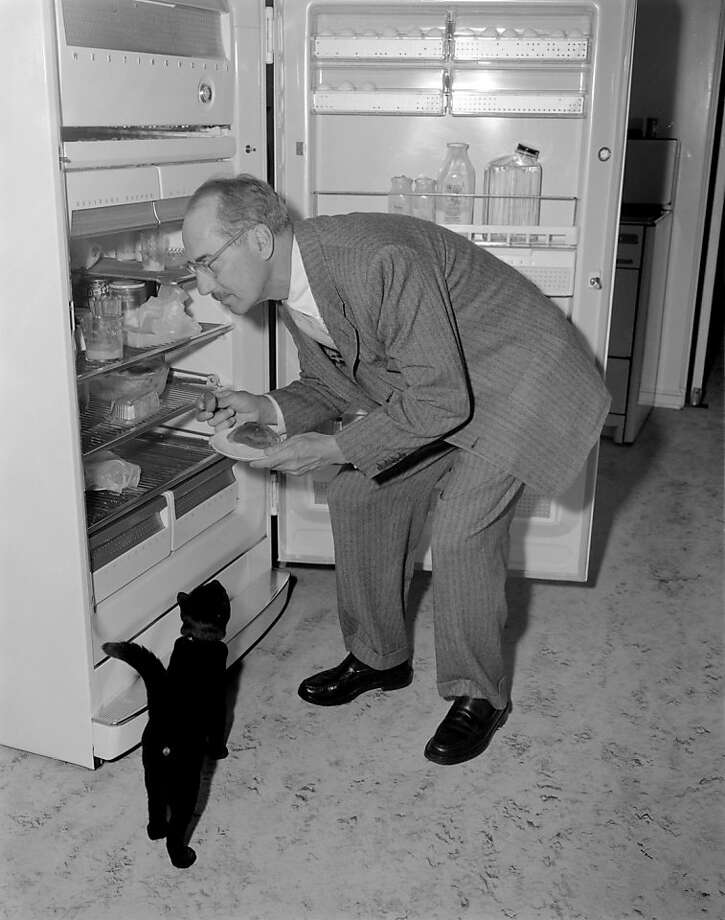 Groucho Marx bends down to look in the fridge while a black cat eagerly watches. Photo: Gene Lester, Getty Images