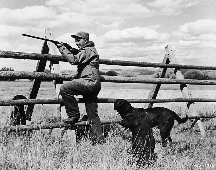 Bing Crosby leans against a fence as he aims his rifle while his hunting dogs look on.