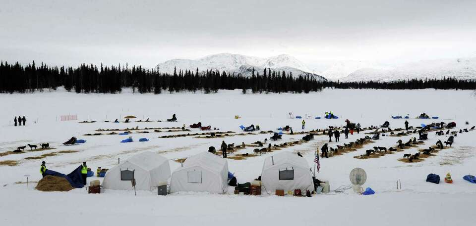 Competitors arrive at the Finger Lake checkpoint in Alaska during the Iditarod Trail Sled Dog Race o