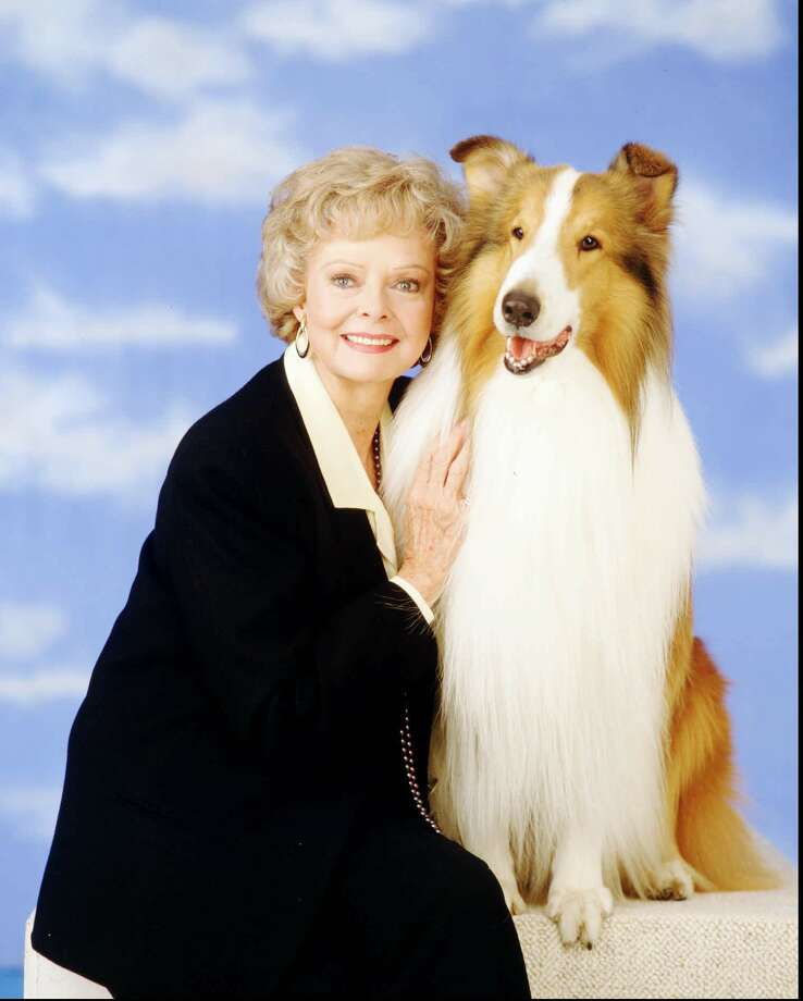Lassie, with June Lockhart in this 1994 file photo, was no match for Bootsy, especially when it came to guarding boys sleepwalking in the snow. Photo: BOB D'AMICO, ST / CAPITAL CITIES/ABC, INC.