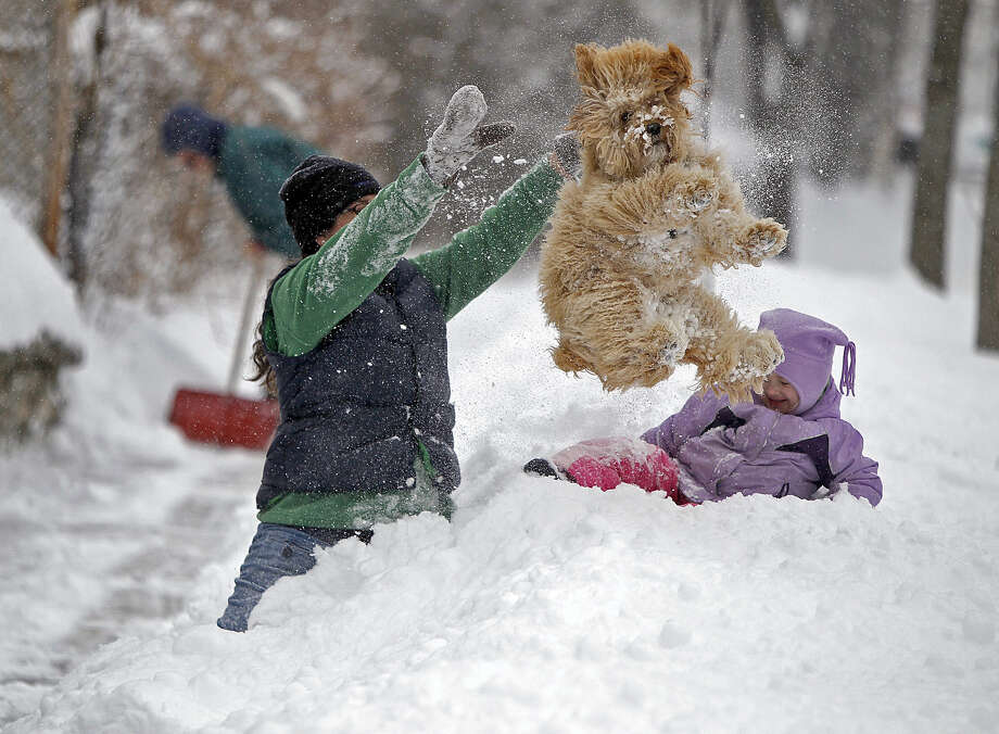 Lindsay Knutson, left, plays in the heavy snow with her family dog, Aspen, and daughter Flora Bejblik, 4, cq, as her husband Bob Bejblik, rear left, shovels, Tuesday, March 5, 2013 in southwest Minneapolis. The National Weather Service predicted a two-day snow total of 8 to 12 inches for much of southeastern and east-central Minnesota, including the Twin Cities. Photo: Elizabeth Flores, Associated Press / The Star Tribune
