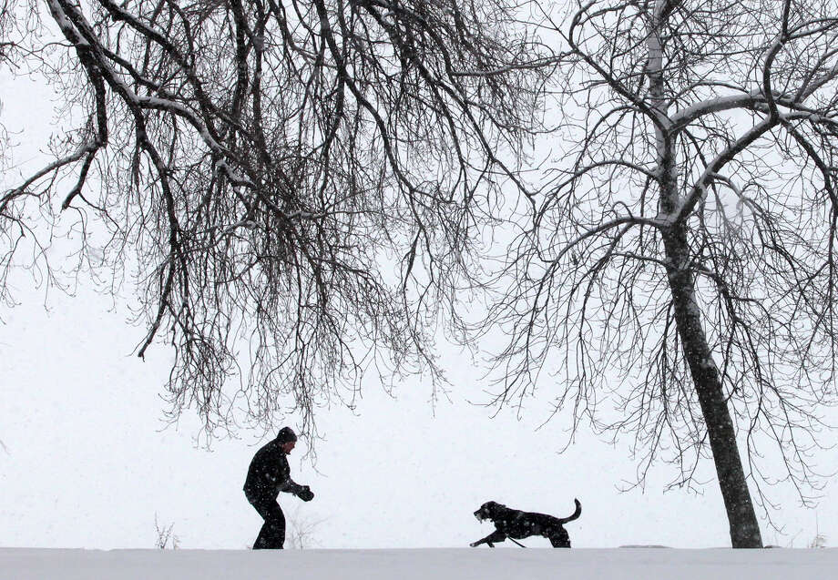 Under a cascade of steadily-falling snow, Spencer Walts, and his chocolate laborador retriever, Gus, enjoy a walk in Yahara Place Park in Madison, Wis. Tuesday, March 5, 2013. Photo: John Hart, Associated Press / Wisconsin State Journal