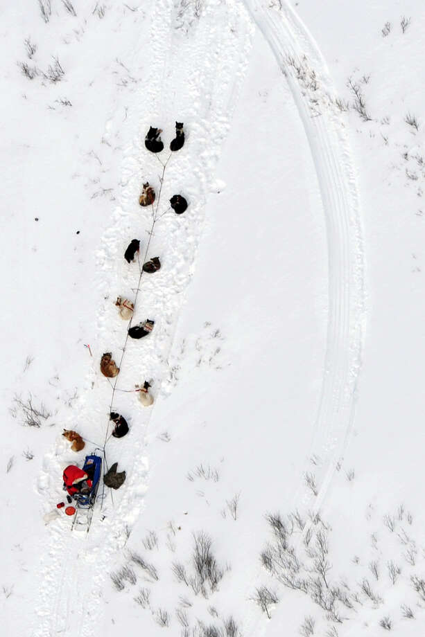 A musher and dog team rest between the Rohn and Nikolai checkpoints in Alaska during the Iditarod Trail Sled Dog Race on Tuesday, March 5, 2013. Photo: Bill Roth, Associated Press / The Anchorage Daily News