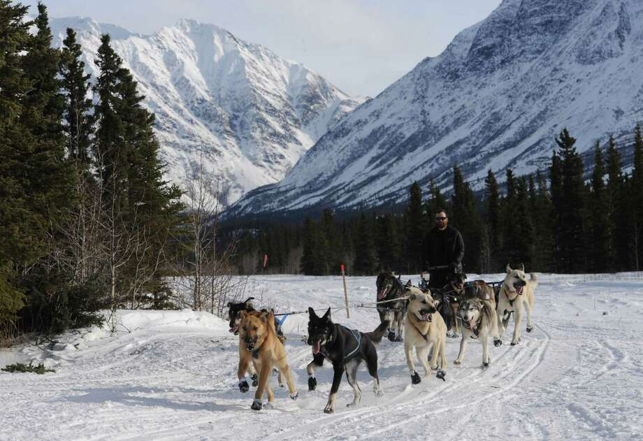 With the Alaska Range behind him, James Volek drives his dog team along the airstrip as he approaches the Iditarod Trail Sled Dog Race checkpoint of Rohn, Alaska, on Tuesday, March 5, 2013. Photo: Bill Roth, Associated Press / Anchorage Daily News