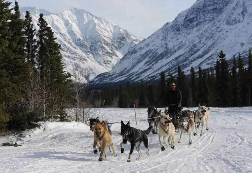 With the Alaska Range behind him, James Volek drives his dog team along the airstrip as he approache