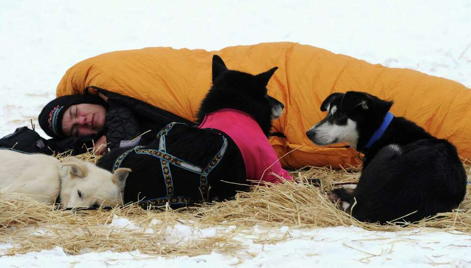 Iditarod rookie Christine Roalofs curls up to take a nap with her dogs at the Iditarod checkpoint on