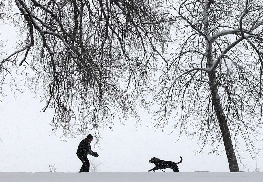 Under a cascade of steadily-falling snow, Spencer Walts, and his chocolate laborador retriever, Gus, enjoy a walk in Yahara Place Park in Madison, Wis. Tuesday, March 5, 2013.  Photo: John Hart, Associated Press