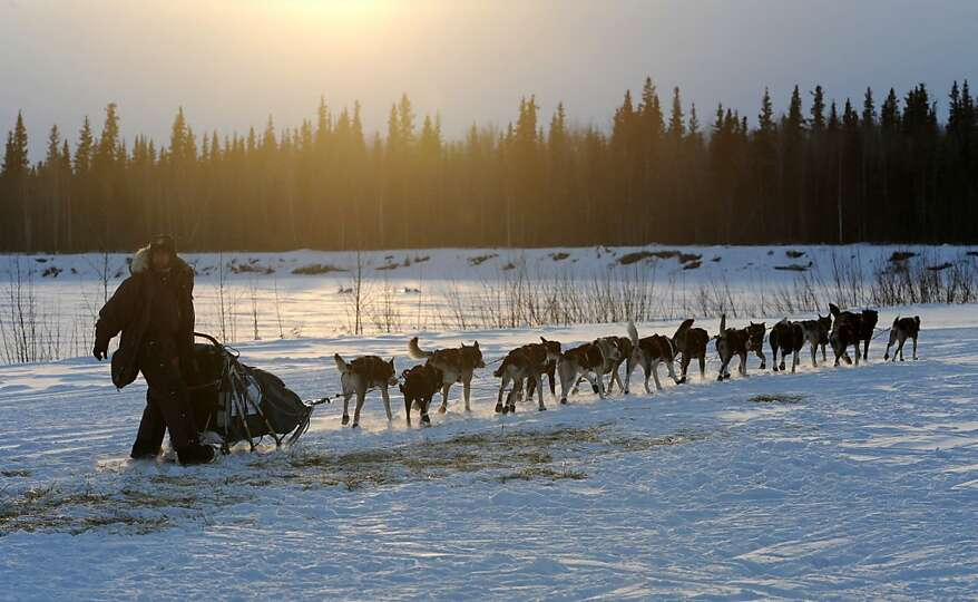Veteran Iditarod musher Robert Bundtzen drives his team away from the Athabaskan village of Nikolai,