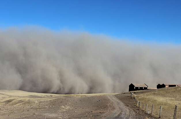 Grit blitz: A sandstorm rumbles into Shandan Horse Ranch in Zhangye, China, making it difficult for both human and horse to breath. Photo: Afp, AFP/Getty Images