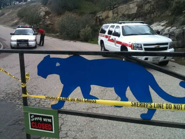 Cat Haven in Dunlap, Calif. is closed following the fatal mauling of an intern by an African Lion. Photo: KCRA