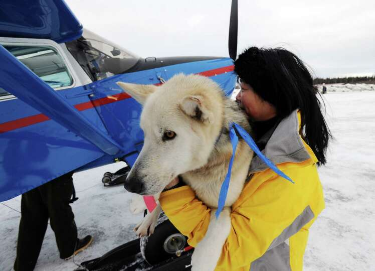 Kidron Flynn carries a dropped dog to an Iditarod Air Force plane during the Iditarod Trail Sled Dog