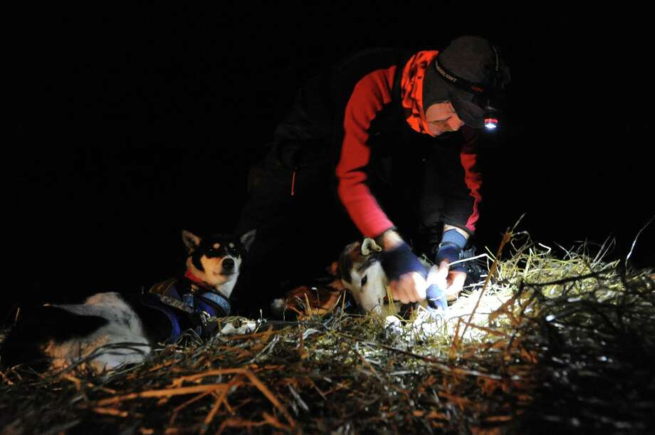Allen Moore puts booties on his dog team before leaving the village of Nikolai, Alaska during the Iditarod Trail Sled Dog Race, Tuesday, March 5, 2013. Photo: Bill Roth, Associated Press / Anchorage Daily News