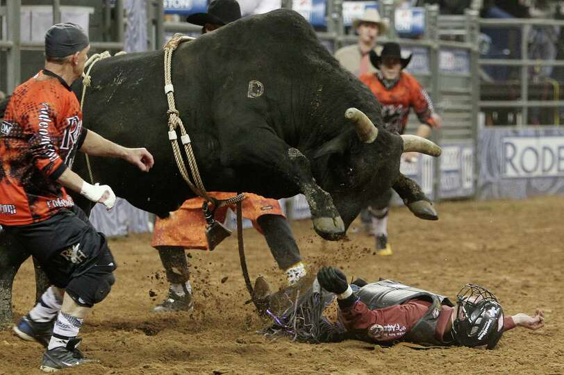 A bull hovers over a cowboy competing in Bull Riding during the BP Super Series IV Round 1 at Relian