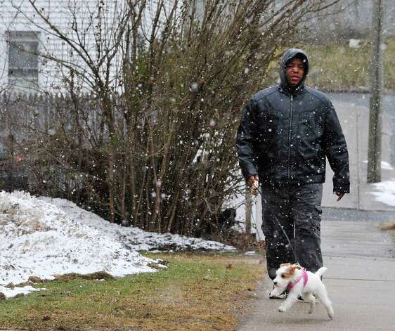 Shawn Owens walks Sophie through Thursday's snow in Danbury, Conn. March 7, 2013. Sophie is five months old today. Photo: Michael Duffy / The News-Times