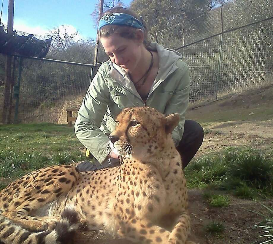 Dianna Hanson with a cheetah at Cat Haven sanctuary in January. She was killed by a lion in March. Photo: Hanson Family, Courtesy