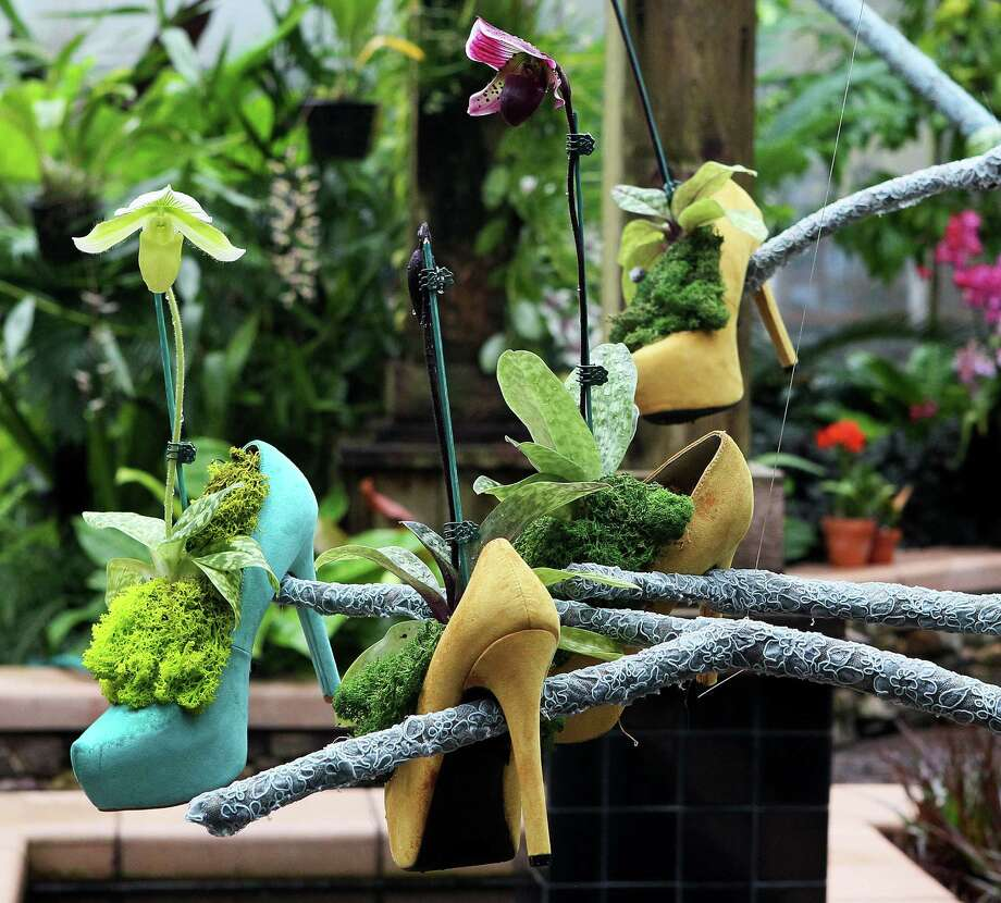 "Lady Slipper orchids rest in high heels on a tree coated with stockings fabric in the Giorgio de Chirico themed Orchid Display House as part of the Atlanta Botanical Garden's ""Orchid Daze: Surreal Beauty,"" show of fanciful flowers and playful objects, February 8, 2013. Photo: Phil Skinner, MCT / Atlanta Journal-Constitution"