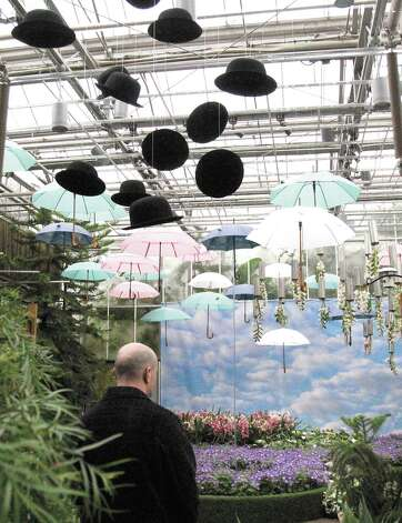 "Bowler hats, umbrellas and upside down orchids are features in the Rene Magritte themed Orchid Atrium as part of the Atlanta Botanical Garden's ""Orchid Daze: Surreal Beauty,"" show of fanciful flowers and playful objects, February 8, 2013. Photo: Phil Skinner, MCT / Atlanta Journal-Constitution"