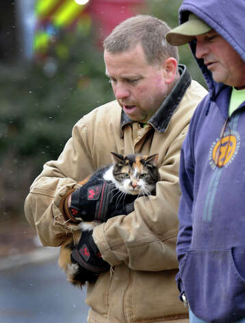 Chris McCollum with the Bethel Fire Dept. carries a cat that was removed from a house fire on Reservoir Street in Bethel, Thursday, March 7, 2013. Photo: Carol Kaliff / The News-Times