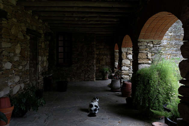 Dominic explores the patio of the offices at Mission Espada on Wednesday, Feb. 20, 2013. Photo: Lisa Krantz, San Antonio Express-News / San Antonio Express-News