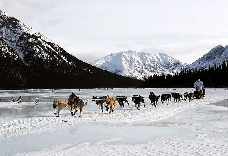 In this March 5, 2013 photo, four-time Iditarod champion Martin Buser leaves the Rohn checkpoint in