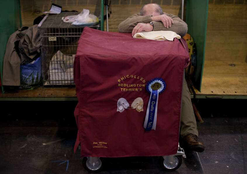 An owner rests during the first day of the Crufts dog show in Birmingham, in central England on Marc