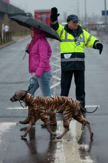 An owner arrives with her dog wearing a waterproof suit on the first day of the Crufts dog show in B