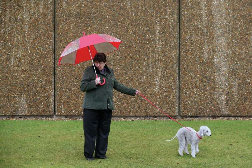 Dogs and their owners arrive to attend the first day of Crufts dog show at the NEC on March 7, 2013