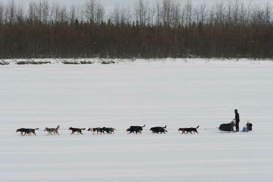 Musher Matt Failor drives his team down the Kuskokwim River after leaving the Iditarod checkpoint in McGrath on Wednesday, March 6, 2013. Photo: Bill Roth, Associated Press / The Anchorage Daily News