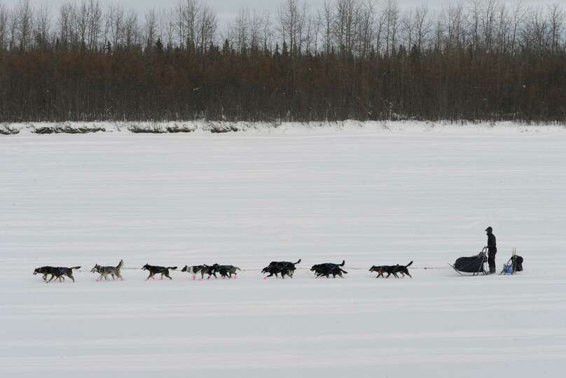Musher Matt Failor drives his team down the Kuskokwim River after leaving the Iditarod checkpoint in