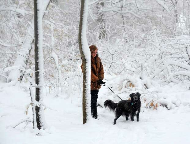 Emma Theroux and her dog Pilar walk through the open space on Katona Dr. in Fairfield, Conn. as snow continues to fall on Friday, March 8, 2013. Photo: Cathy Zuraw / Connecticut Post