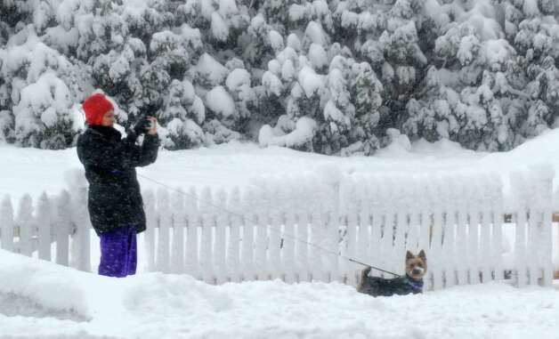 A woman takes a photo as she walks her small dog along Katona Dr. in Fairfield, Conn.as snow continues to fall on Friday, March 8, 2013. Photo: Cathy Zuraw / Connecticut Post