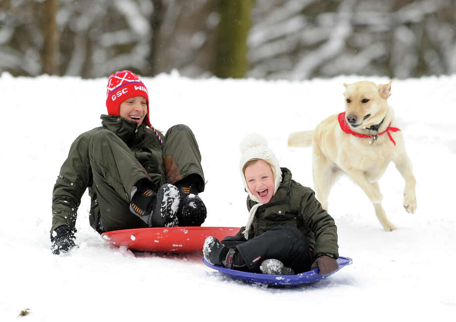 At center, Katia Vincent, 4, of Greenwich, screams as she leads the way down a small hill while sledding with her mother, Sasha Vincent, and family dog, Milo, during the snow storm in Bruce Park, Greenwich, Friday afternoon, March 8, 2013. Photo: Bob Luckey / Greenwich Time