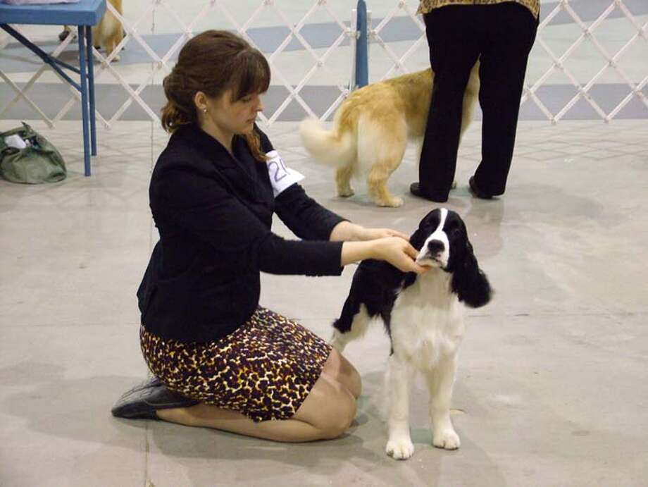 mySpy: Alamo City Cluster of Dog Shows, March 9, 2013 Photo: Pam Howell