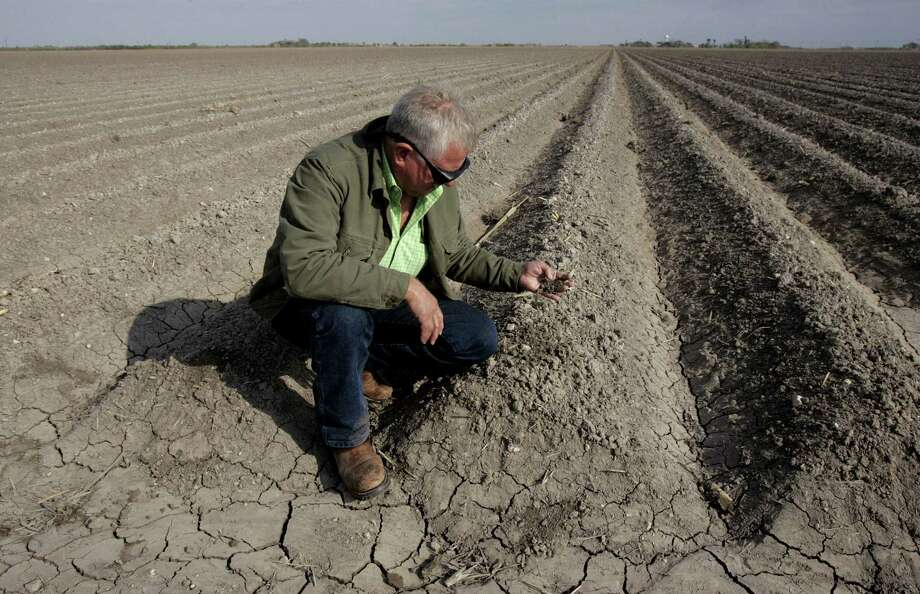 Rio Grande Valley irrigation manager Jo Jo White examines the dry soil in a field. Photo: Delcia Lopez / For The San Antonio Express-News