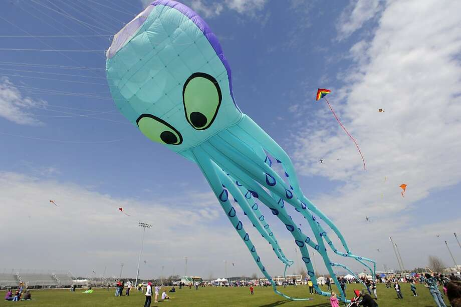 A giant kite named Willy soars over the crowd during the Community Kite Festival at John Hunt Park Saturday, March 9, 2013 in Huntsville, Ala.  The kite, which is held in place with stakes in the ground, was flown by Forever Flying, a kite shop in Decatur.  They were also selling kites at the event. AshaKiran and 52 other non-profits hosted the event which raised awareness of social justice issues. A light breeze and warm temperatures made for a perfect day to 'go fly a kite', and hundreds of people lshowed up to do just that.  (AP Photo/Eric Schultz, AL.com) Photo: Eric Schultz, Associated Press