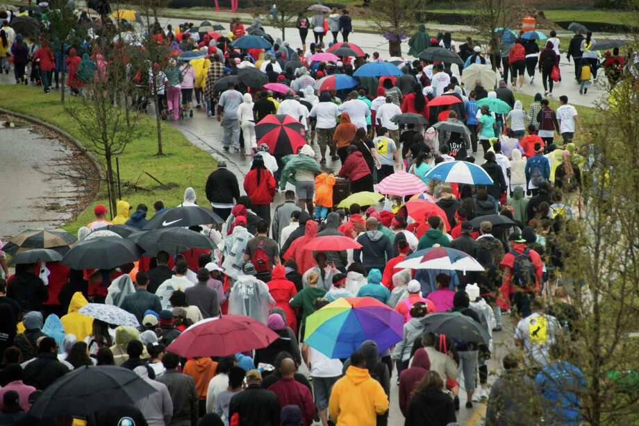 Wakers take cover under umbrellas during the 24th Annual AIDS Walk Houston. Photo: Smiley N. Pool, Houston Chronicle / © 2013  Houston Chronicle