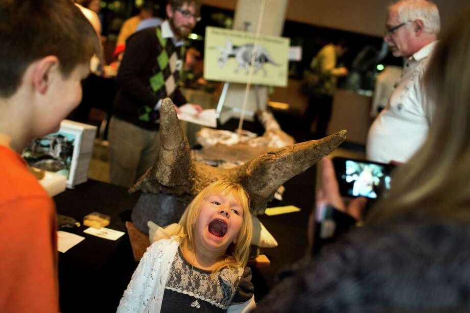 Maggie Siwek, 5, center, plays for her mother's camera while pretending to have fossilized tusks on her head during the annual Dino Day event Sunday, March 10, 2013, at the Burke Museum in Seattle. Photo: JORDAN STEAD / SEATTLEPI.COM