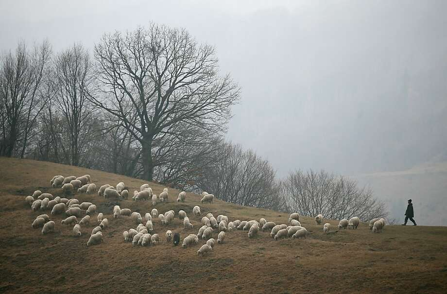 A shepherd keeps watch over his sheep in the Transylvanian Alps on March 10, 2013 near Voinesti, Romania. Both Romania and Bulgaria have been members of the European Union since 2007 and restrictions on their citizens' right to work within the EU are scheduled to end by the end of this year. However Germany's interior minister announced recently that he would veto the two countries' entry into the Schengen Agreement, which would not affect labour rights but would prevent passport-free travel.  Photo: Sean Gallup, Getty Images