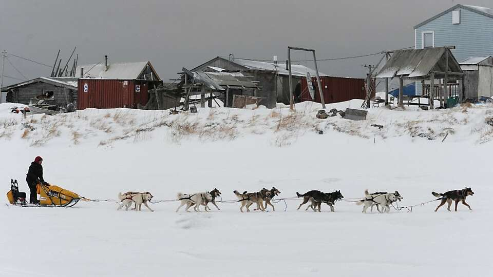 Musher Mitch Seavey arrives at the Unalakleet, Alaska, checkpoint Sunday, March 10, 2013, during the